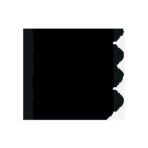 مدار سرج ارستر 5081802