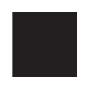 مدار سرج ارستر 5093533
